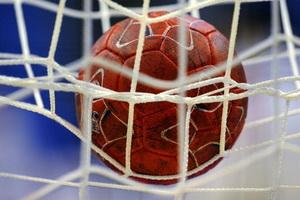 Открытый районный турнир по гандболу памяти В.А. Рисика в Слониме (20-21 мая)