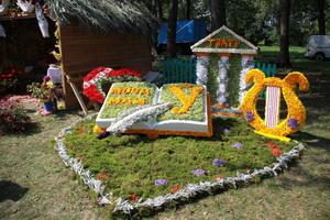 Фестиваль цветов в г.п. Желудок (13 августа)