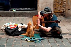Спектакль об уличных музыкантах Минска «Музыка улиц» (13 января 2019 года)