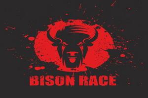 Экстремальный бег с препятствиями «BISON RACE» (19 - 20 мая 2019 года)