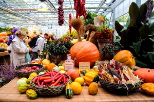 IV Republican Universal Fair «Colors of Autumn»