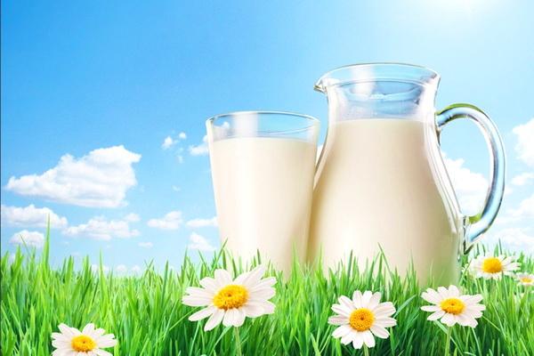 Праздник молока (27 июня 2021 года)