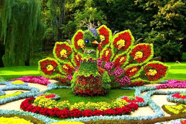 Фестиваль цветов «Жалудок здзяйсняе мары» (8 августа 2021 года)
