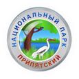 Припятский