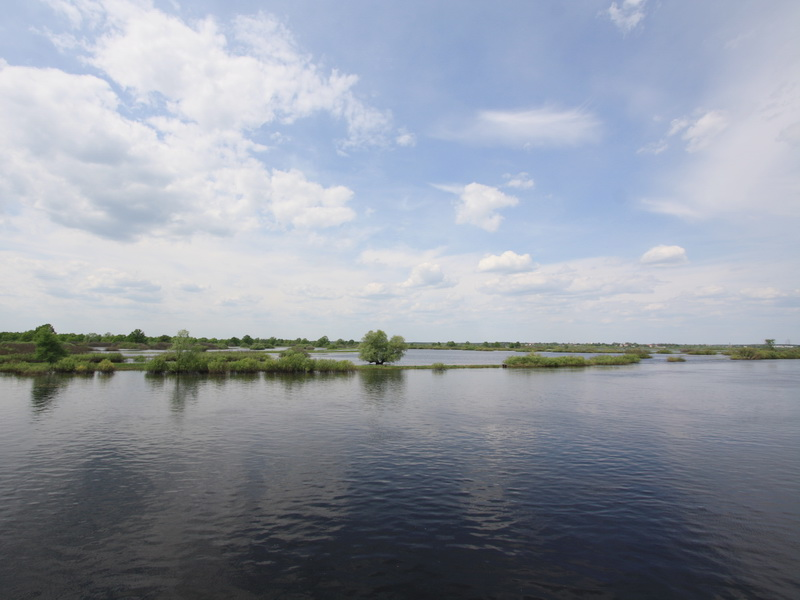 National park Pripyatsky and Turov