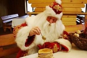 Экскурсии Беловежская пуща и Поместье Деда Мороза